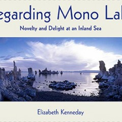Regarding Mono Lake by Elizabeth Kenneday