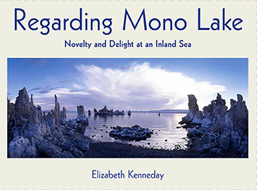 Regarding Mono Lake, Elizabeth Kenneday
