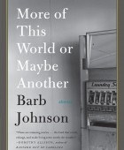More of This World or Maybe Another by Barb Johnson
