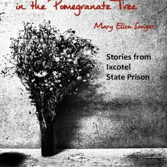 Blackbirds in the Pomegranate Tree: Stories from Ixcotel State Prison by Mary Ellen Sanger